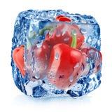 Pimienta roja en cubo de hielo Foto de archivo libre de regalías