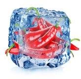 Pimienta roja en cubo de hielo Imagenes de archivo