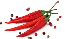 Pimienta roja en un blanco Foto de archivo libre de regalías