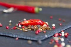 Pimienta roja Especias sostenidas Imagenes de archivo