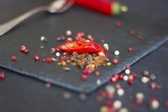 Pimienta roja Especias sostenidas Fotografía de archivo