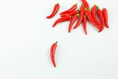 Pimienta roja fresca Foto de archivo libre de regalías