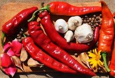 Pimienta roja y ajo Imagen de archivo libre de regalías