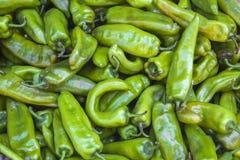 Pimienta verde Fotografía de archivo libre de regalías