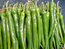 Pimienta verde Foto de archivo libre de regalías