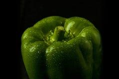 Pimienta verde Fotos de archivo