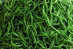 Pimienta verde picante Fotos de archivo