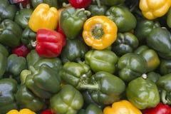 Pimienta verde, roja y amarilla en el mercado del granjero Foto de archivo