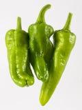 Pimienta verde tres Foto de archivo libre de regalías