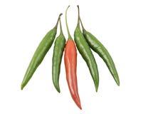 Pimienta verde y roja Foto de archivo libre de regalías