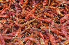 Pimientas Foto de archivo libre de regalías