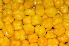 Pimientas amarillas Fotos de archivo