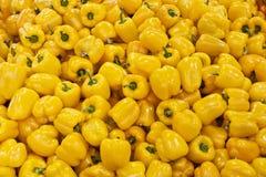 Pimientas amarillas Fotos de archivo libres de regalías