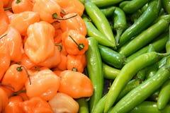 Pimientas anaranjadas/del verde enteras de la verdura Fotografía de archivo