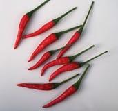 pimientas calientes de Chile Foto de archivo
