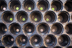 Pimientas, cebollas, ajo, hierbas Foto de archivo libre de regalías