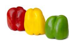 Pimientas coloreadas diversas Fotos de archivo