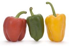 Pimientas coloreadas multi Imagen de archivo libre de regalías