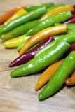 Pimientas coloridas. Imagen de archivo libre de regalías