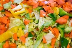 Pimientas coloridas de las zanahorias de la lechuga de la base de la ensalada Fotografía de archivo