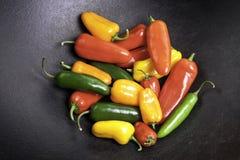 Pimientas coloridas en un crisol del arrabio  Imagen de archivo