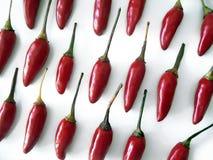 Pimientas de chile Imagen de archivo libre de regalías