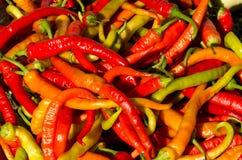 Pimientas de chile Foto de archivo libre de regalías