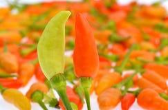 Pimientas de chile caliente Imagen de archivo libre de regalías