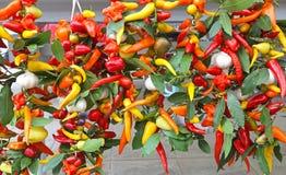Pimientas de chile caliente Foto de archivo