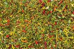 Pimientas de chile candentes maduras Foto de archivo