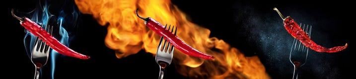 Pimientas de chile de la isla del fuego Imagen de archivo