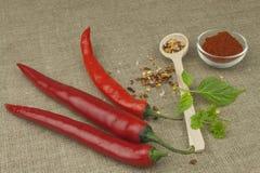 Pimientas de chile en un fondo de la lona Los ingredientes para la comida picante Foto de archivo