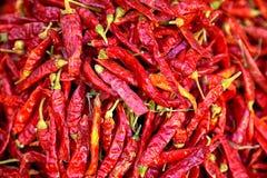Pimientas de chile frescas rojas brillantes Imagen de archivo libre de regalías