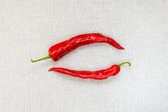 Pimientas de chile picantes rojas en blanco Fotografía de archivo libre de regalías