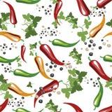 Pimientas de chile rojas, amarillas y verdes Leavs verde peppercorns Mano dibujada en arte pop del estilo Ejemplo del vector, sea Fotos de archivo libres de regalías
