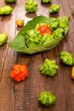 Pimientas de chile rojas y verdes en formato vertical Fotos de archivo libres de regalías