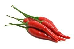 Pimientas de chile rojo 2 Imagenes de archivo