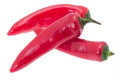 Pimientas de chile rojo Fotografía de archivo libre de regalías