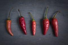 Pimientas de chile rojo Imagen de archivo libre de regalías