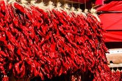 Pimientas de chile rojo Imágenes de archivo libres de regalías
