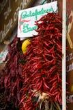 Pimientas de chile rojo colgantes Fotos de archivo libres de regalías