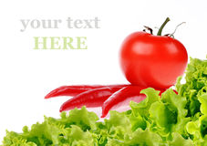 Pimientas de chile rojo con los tomates rojos Fotografía de archivo libre de regalías