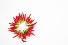 Pimientas de chile rojo en un círculo Fotografía de archivo libre de regalías
