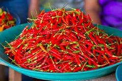 Pimientas de chile rojo para la venta en el mercado Fotos de archivo libres de regalías