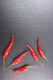 Pimientas de chile tailandesas secadas en una placa de la pizarra con el copyspace Fotos de archivo libres de regalías