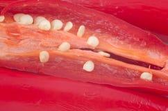 Pimientas de chiles Imagen de archivo