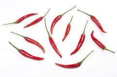Pimientas de chiles determinados o rojos en blanco Foto de archivo libre de regalías
