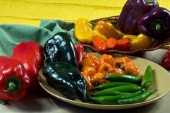 Pimientas de chiles mezcladas Foto de archivo libre de regalías