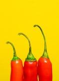 Pimientas de chiles rojos Imagen de archivo libre de regalías