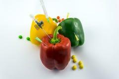 Pimientas de la OGM Foto de archivo